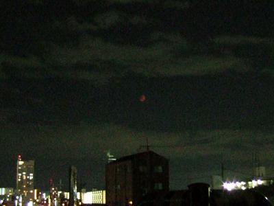 皆既月食を観測